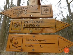 Nationalpark; Hainich; Steinbergweg; Baumkronenpfad; Thiemsburg; zufussunterwegs
