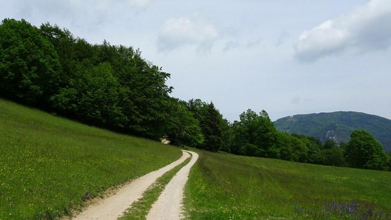 zu Fuss unterwegs; Jasmin Sahovic; wandern; Glücksgefühl