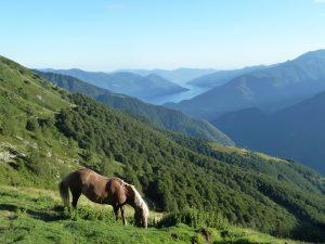 Wanderreise Tälerhüpfen Tessin Schweiz individuell