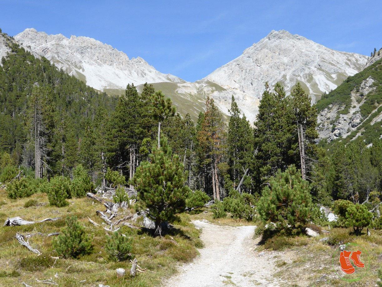 Schweizerischer Nationalpark - 5 Wanderungen, die Du nicht verpassen darfst