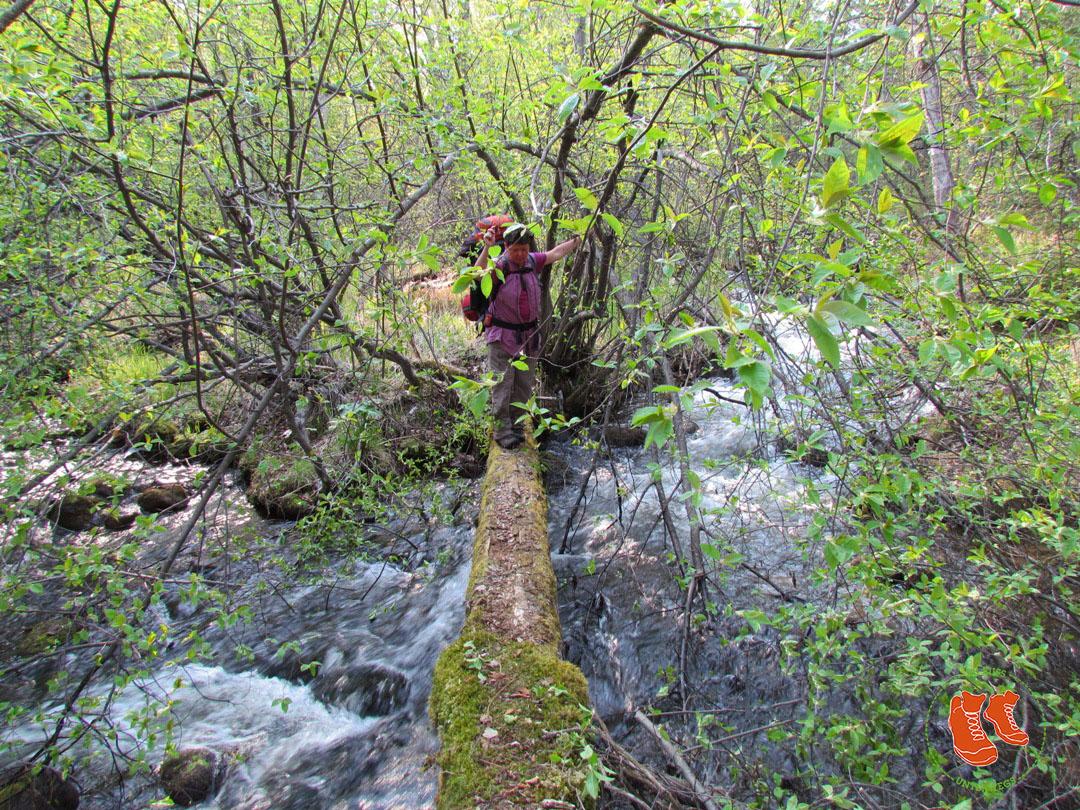 Wegloses Wandern am Baikalsee