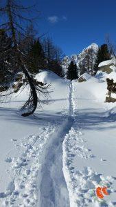 zuFussunterwegs: den eigenen Weg finden und gehen!