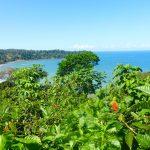 Reisen und Natur in Costa Rica - ein Paradeland für Slow Travel