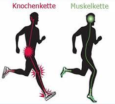 Richtig gehen will gelernt sein - Auswirkung des Gehens auf den Körper