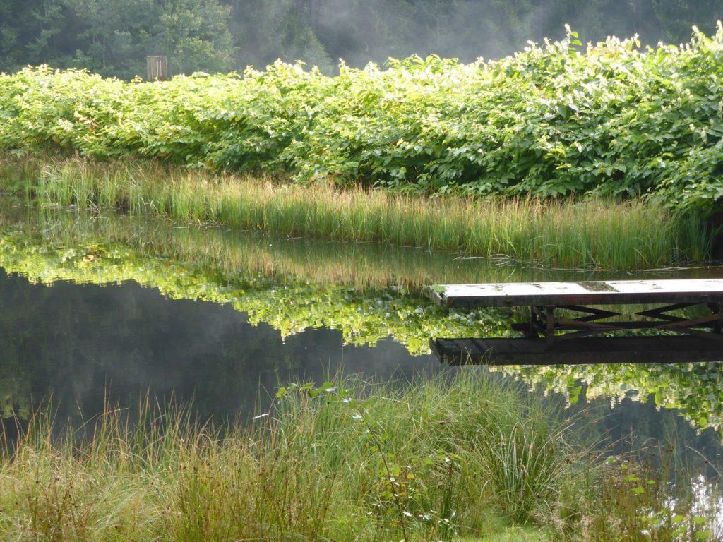 Sich Zeit nehmen für Stille und Natur - und für sich selbst.
