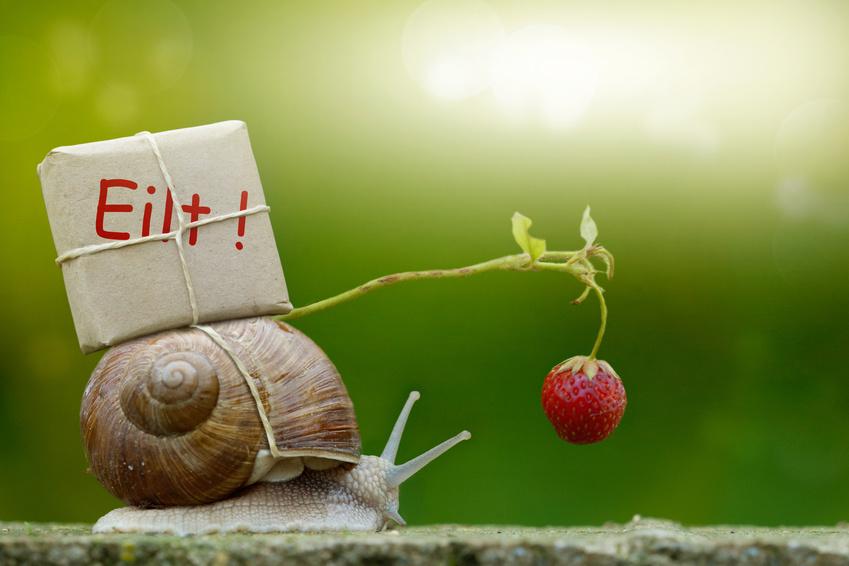 Bewusst langsam machen ist das neue Schnell!