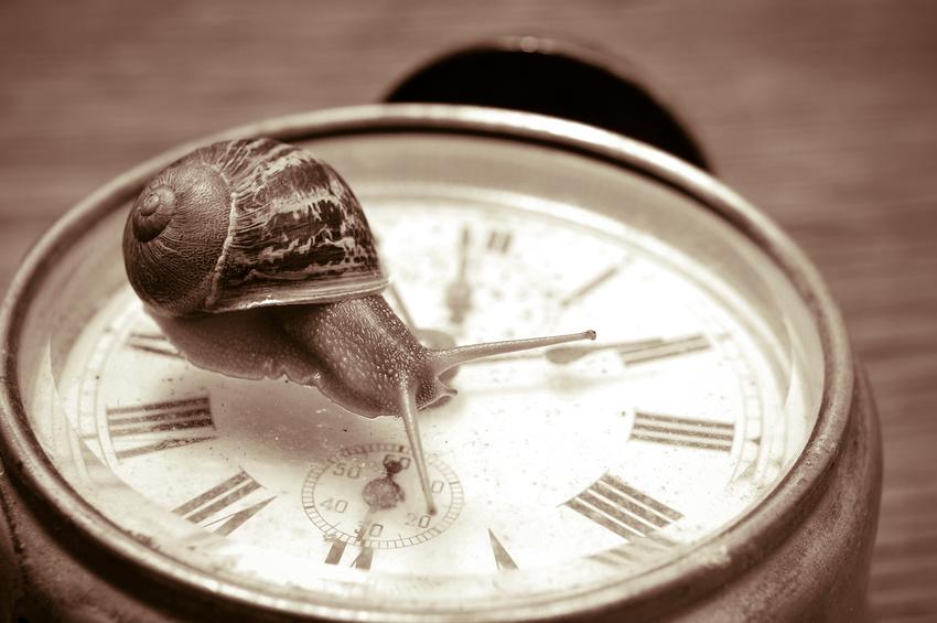 So wirst Du LangsamMacher in 4 Zeilen - die Wiederentdeckung der Langsamkeit